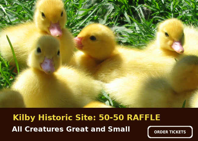 All Creatures Great and Small: 50/50 Raffle 2021