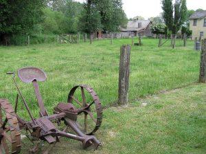 farm pasture2 01 13 2014